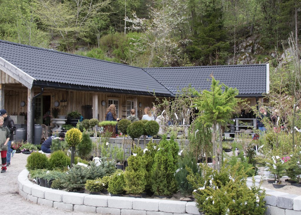 Planter og trær på utsiden av Drømmehagen